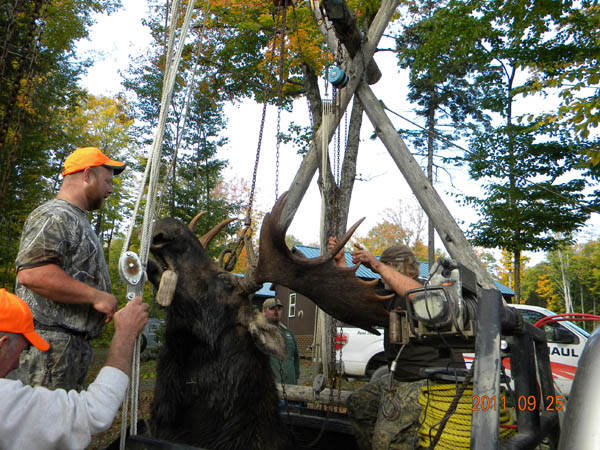 Maine hunting and fishing photos maine moose camps for Maine fishing camps