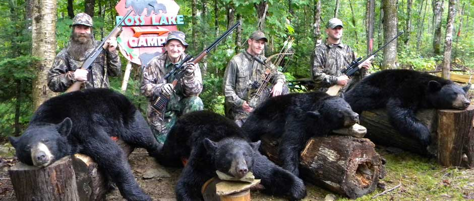 Maine Moose Hunting Black Bear Hunting Upland Birds